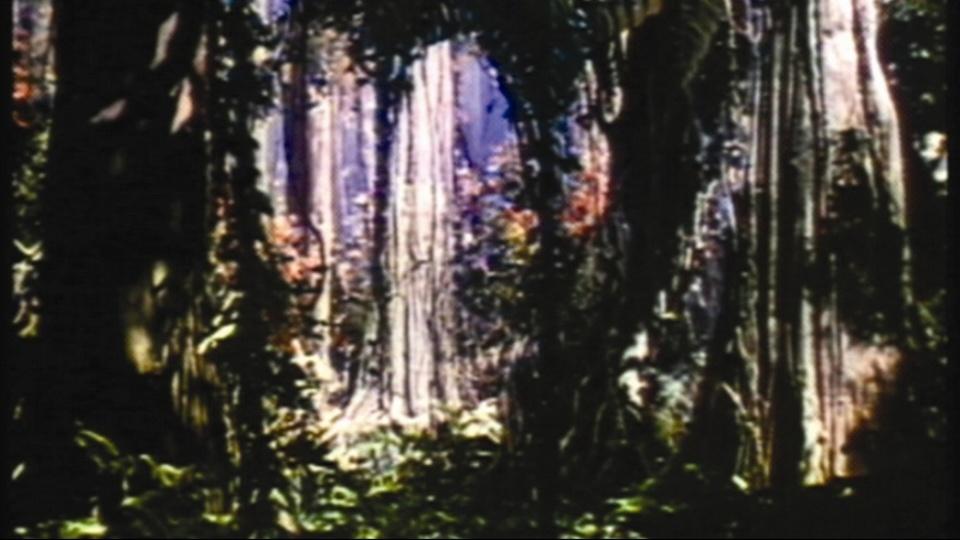 ジャングル・ブック(1942) 動画