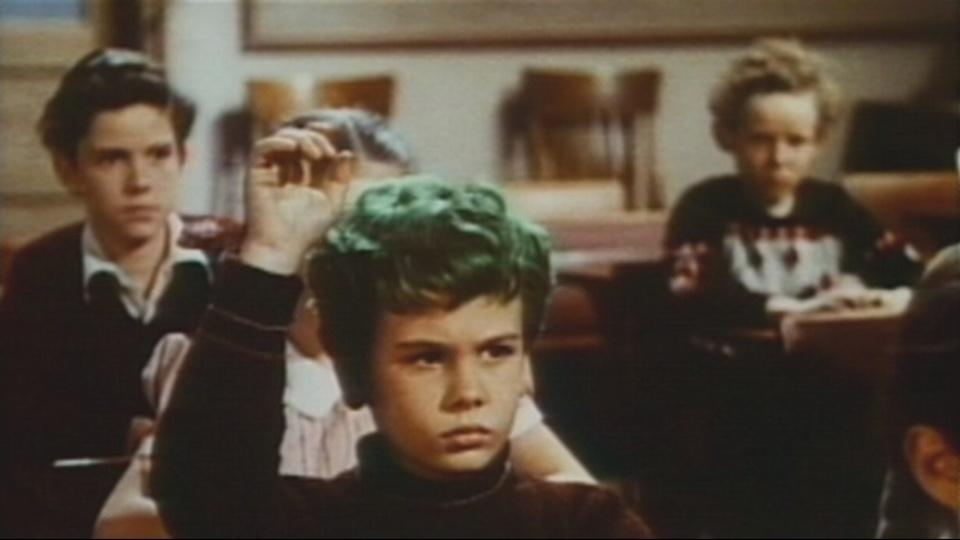 緑色の髪の少年 動画
