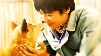 【映画 おすすめ 日本】ひまわりと子犬の7日間