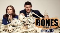 【ボーンズ シーズン10 無料】BONES -骨は語る- シーズン10